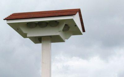 Schwalbenhaus mit 12 Nestern
